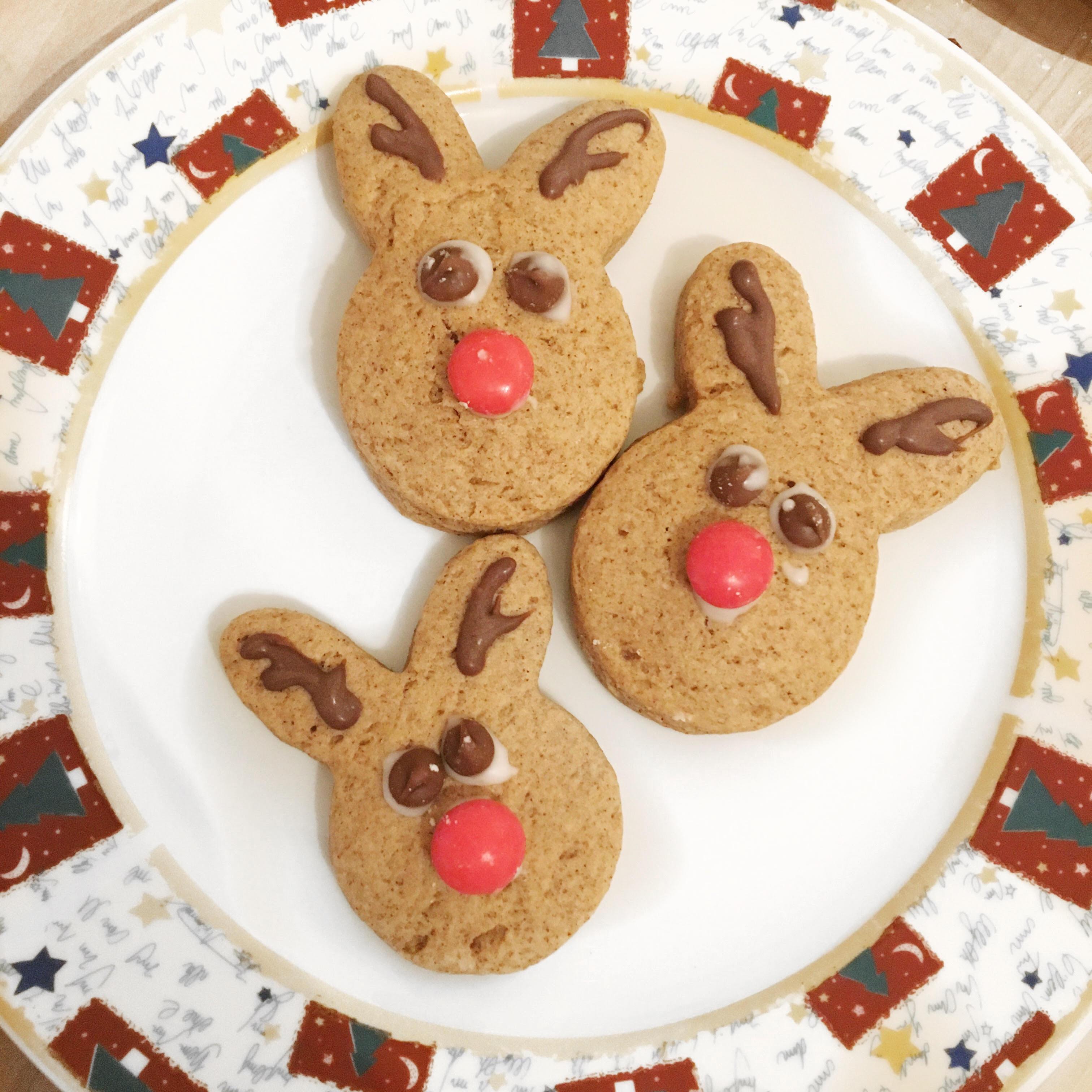 Blogmas Day 24: How to Bake Reindeer Cookies